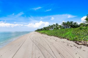 View of the beach from the backyard of Hillsboro Shores real estate