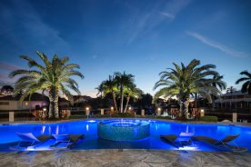 Pool with palm trees   florida luxurious properties